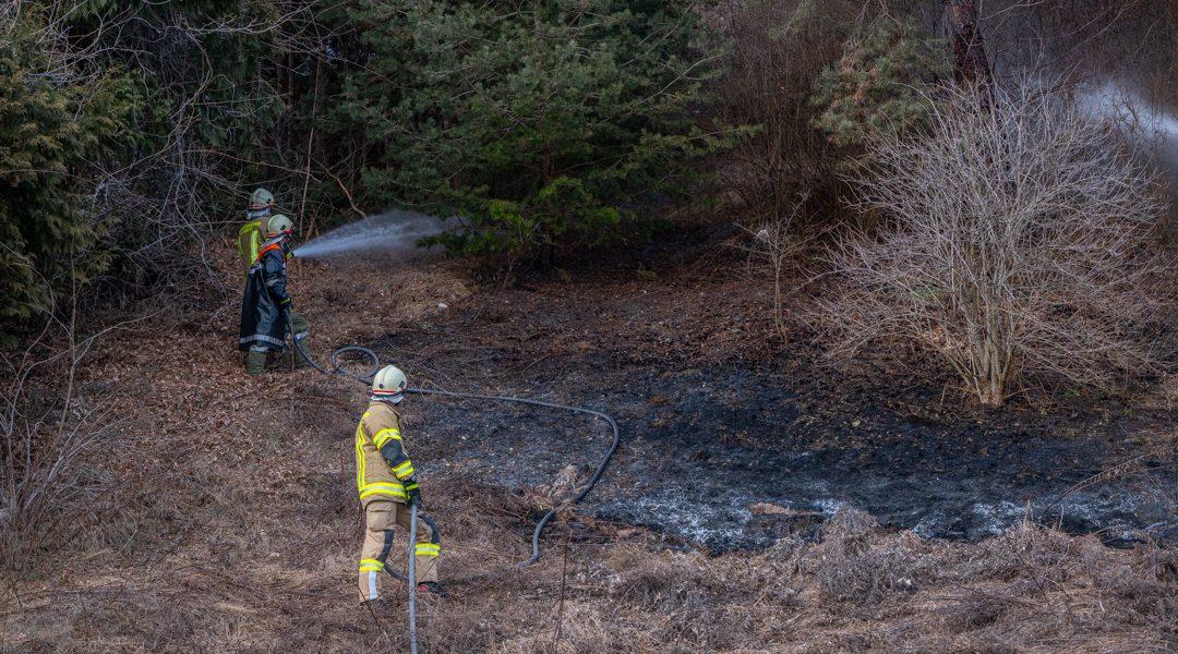Flächenbrand durch Feuerwerkskörper