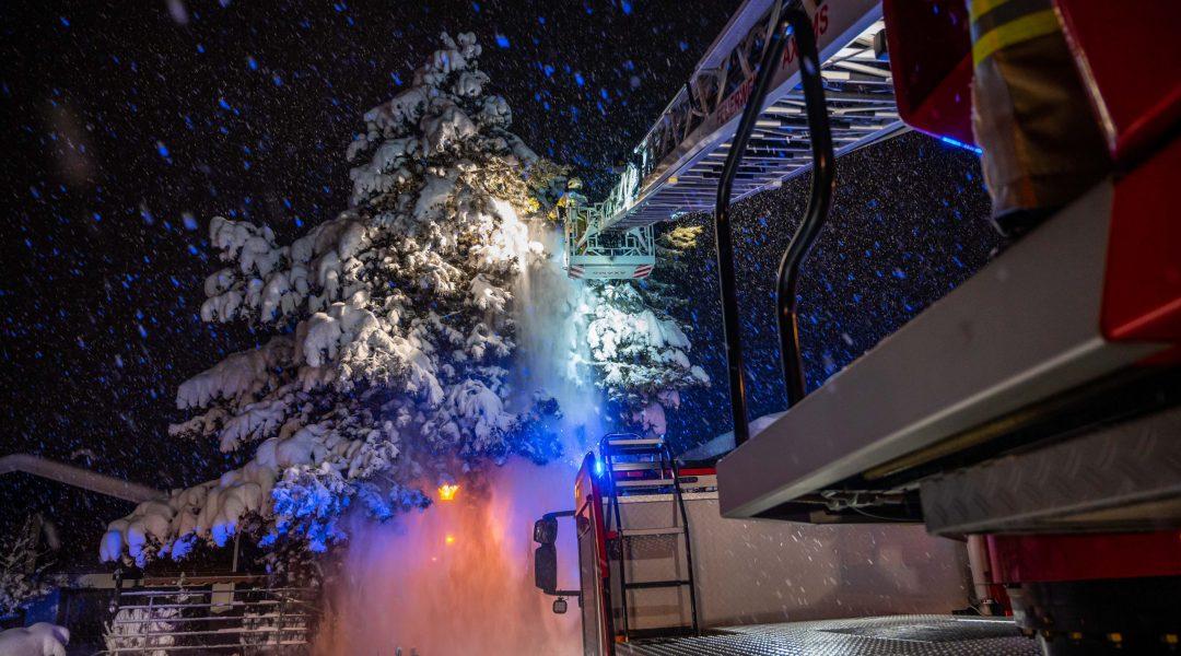 Schneelast überfordert Baum