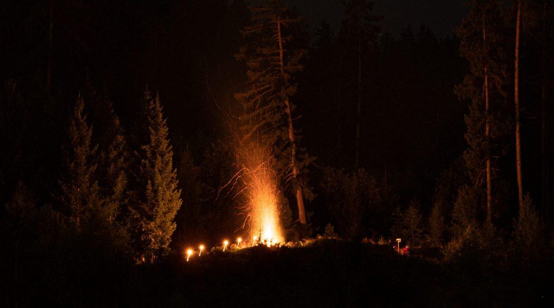 Vermeintlicher Waldbrand